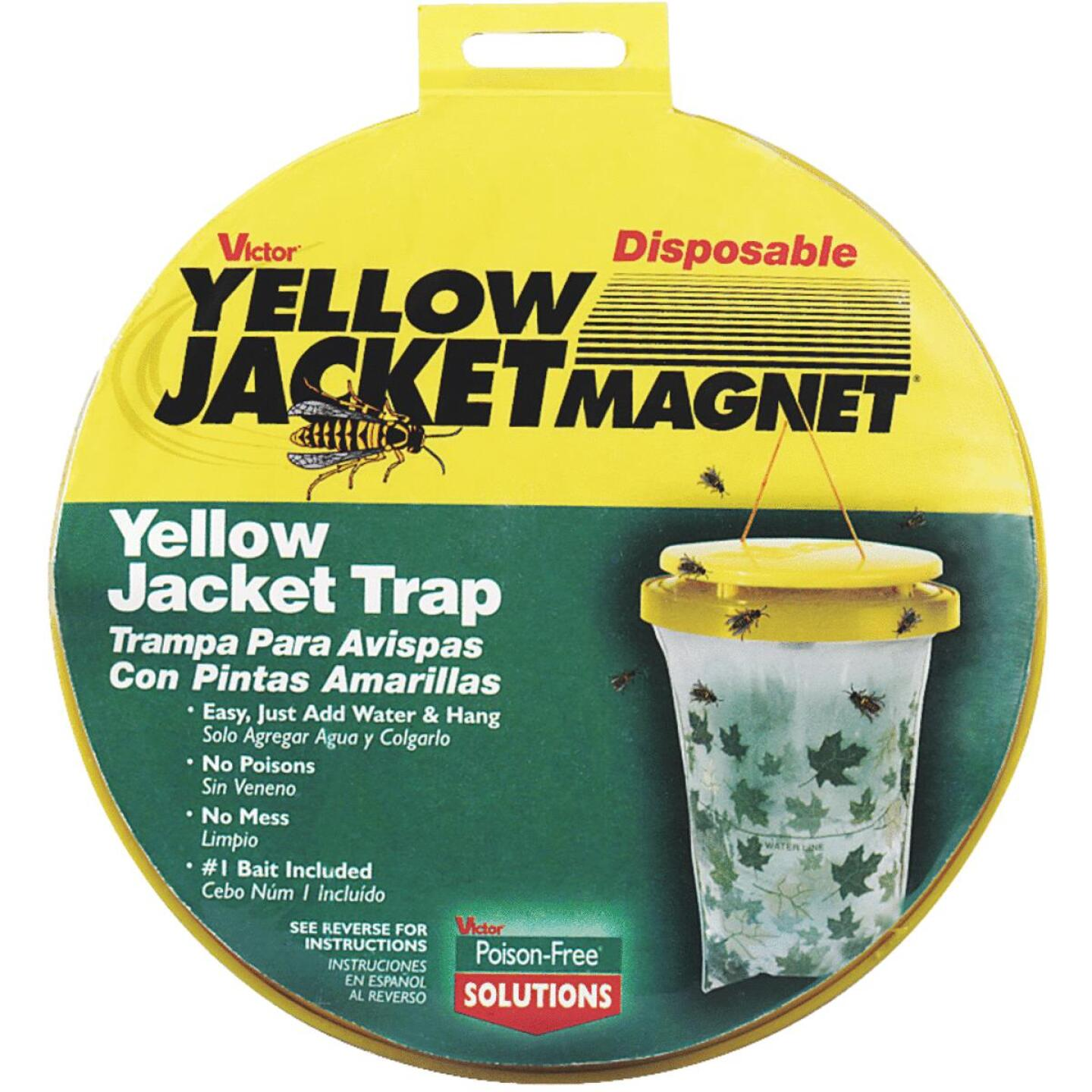 Victor Yellow Jacket Magnet Disposable Yellow Jacket Trap Image 1